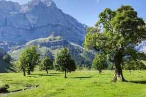 Ahornboden im Karwendel